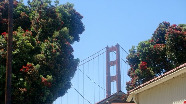 San Francisco. Arts in Abundance.