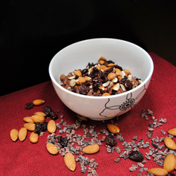 chocolate cherry oatmeal 250x250px