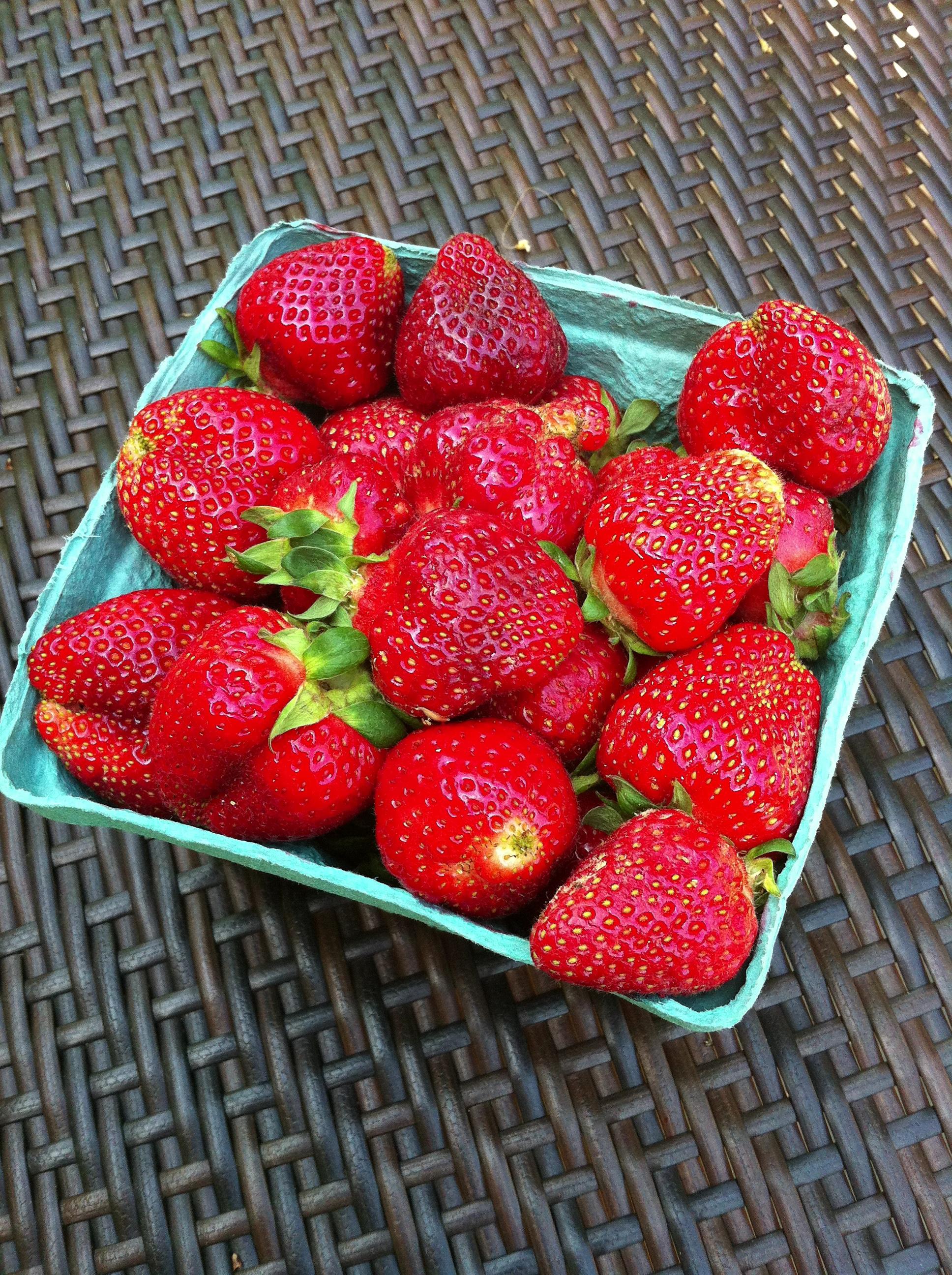 Beautiful local strawberries!