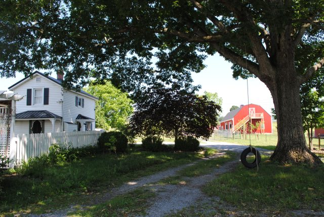 """A Better Way"" Goat Farm in Waynesboro, VA"